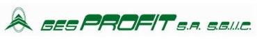 GES PROFIT Logo
